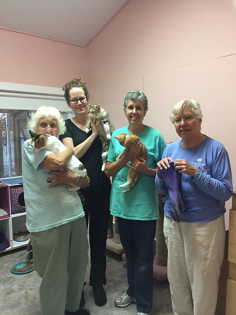 Volunteers at Pat Brody Shelter for Cats holding cats