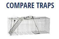 Compare Traps