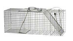 1-Door Traps