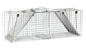 2-Door Traps