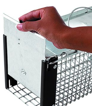 ... animals can effectively trigger the door closed and the mesh openings are smaller than competing traps so little critters cannot steal the bait.  sc 1 st  Havahart & Extra Small 1-Door Live Animal Trap| Havahart® 0745