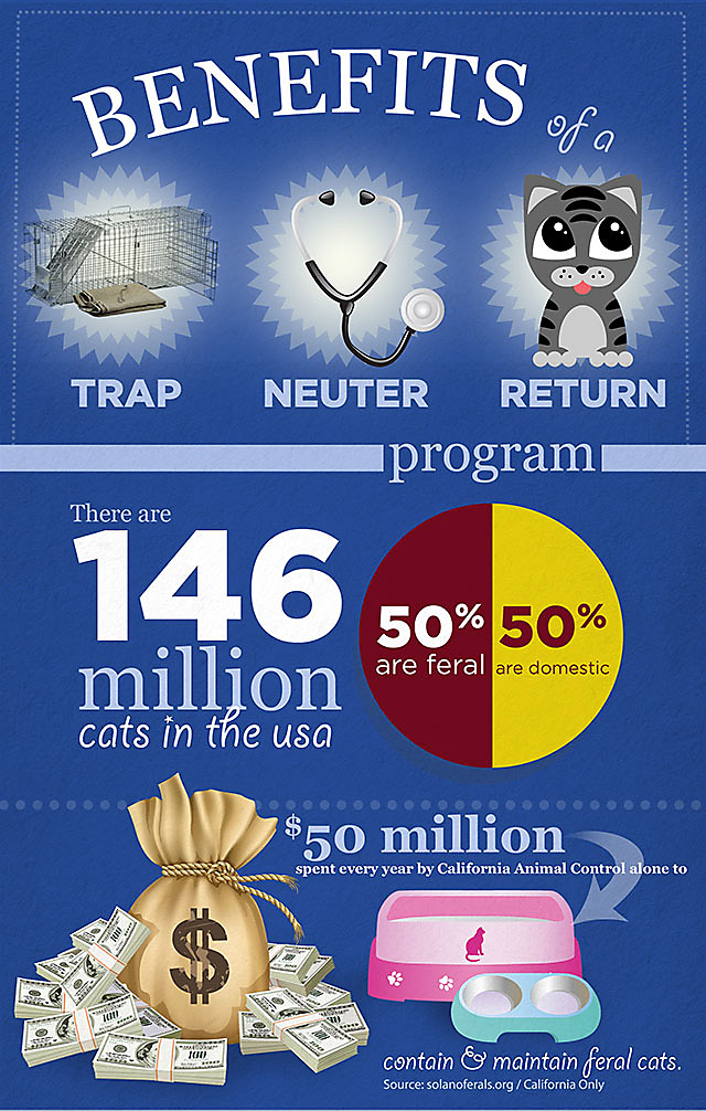 Benefits of Trap Neuter Return Programs, part 1