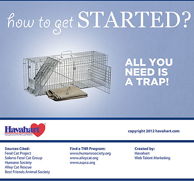 Benefits of Trap Neuter Return Programs, part 5